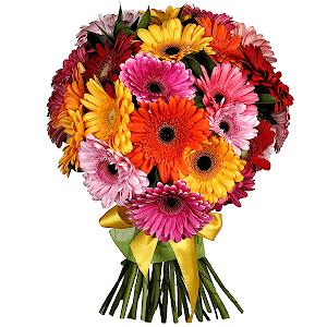 Заказ цветов с доставкой в череповце купить цветы для дачи в москве